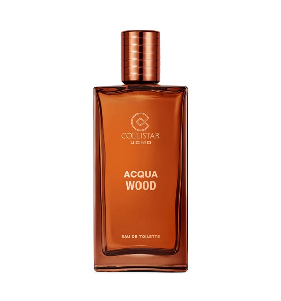 ACQUA WOOD EDT UOMO 100 ML
